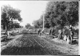 Waverly Street between Lincoln and Kingsley Avenues, 1902