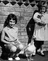 Two girls and pet duck