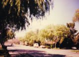 Middlefield Road from San Antonio Road, 1994